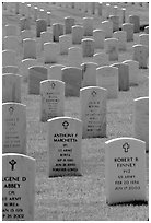 Rows of tombs, Black Hills National Cemetery. Black Hills, South Dakota, USA (black and white)