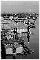 Houseboats and Mt Hood. Portland, Oregon, USA ( black and white)