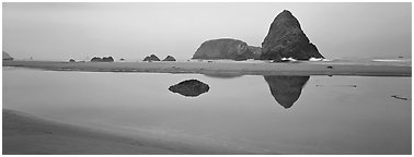 Sea stacks reflected in tidepool. Oregon, USA (Panoramic black and white)