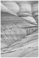 Eroded volcanic ash hummocks. John Day Fossils Bed National Monument, Oregon, USA ( black and white)