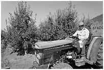 Man on tractor in orchard. Oregon, USA ( black and white)