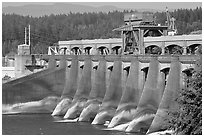 Bonneville Dam. Columbia River Gorge, Oregon, USA (black and white)