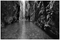 Stream and moss-covered walls, Oneonta Gorge. Columbia River Gorge, Oregon, USA (black and white)