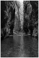 Stream and slot-like canyon walls, Oneonta Gorge. Columbia River Gorge, Oregon, USA ( black and white)