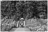 Alley in Rose Garden. Portland, Oregon, USA ( black and white)