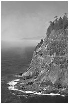 Seacliff near Cap Meares. Oregon, USA ( black and white)