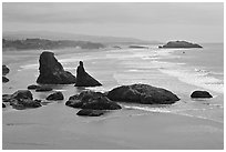 Sea stacks at Face Rock. Bandon, Oregon, USA ( black and white)