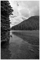 Devils Lake and forested hill. Oregon, USA ( black and white)