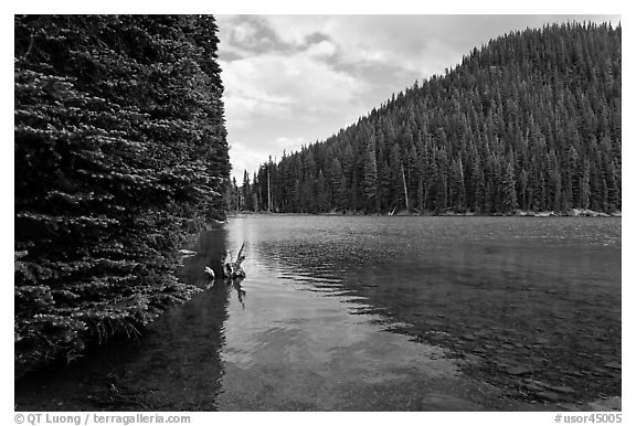 Devils Lake, Deschutes National Forest. Oregon, USA (black and white)