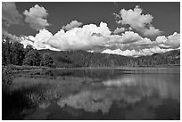Scott Lake. Oregon, USA ( black and white)