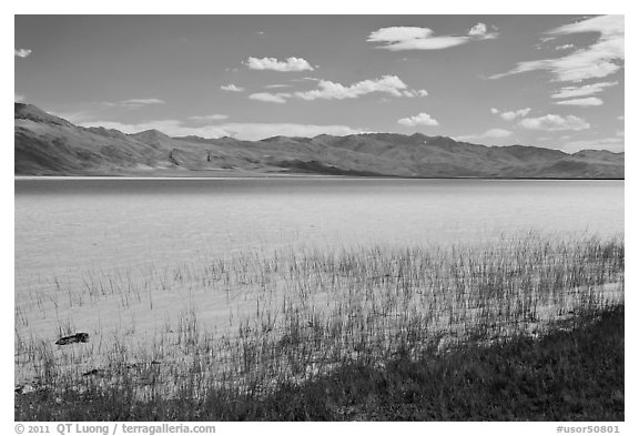 Alkaline lake. Oregon, USA (black and white)