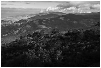 Forested ridges from Hobart Bluff. Cascade Siskiyou National Monument, Oregon, USA ( black and white)
