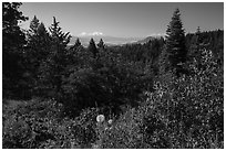 Soda Mountain Wilderness and Mount Shasta. Cascade Siskiyou National Monument, Oregon, USA ( black and white)