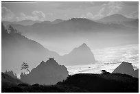 Rugged Coastline, late afternoon, Hamburg Mountain State Park. Oregon, USA ( black and white)