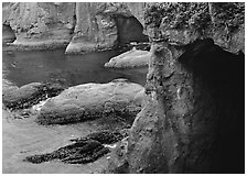 Deep Sea caves, Cape Flattery, Olympic Peninsula. Olympic Peninsula, Washington (black and white)