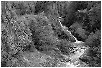 Basalt columns and Muddy River in Lava Canyon. Mount St Helens National Volcanic Monument, Washington ( black and white)