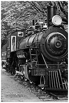Historic steam locomotive, Newhalem. Washington ( black and white)