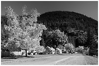 Diablo in autumn. Washington ( black and white)