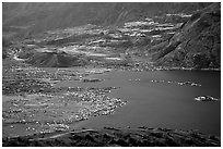 Spirit Lake, partly covered with floating logs. Mount St Helens National Volcanic Monument, Washington ( black and white)