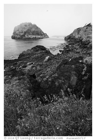 Point Colville, Lopez Island. Washington (black and white)
