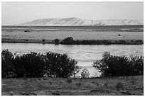 Columbia River and Rattlesnake Mountains, Wahluke Unit, Hanford Reach National Monument. Washington ( black and white)