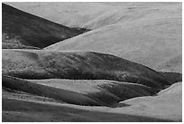 Grassy hills, Saddle Mountain Unit, Hanford Reach National Monument. Washington ( black and white)