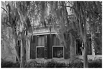 Spanish moss covered trees and windows. Selma, Alabama, USA (black and white)