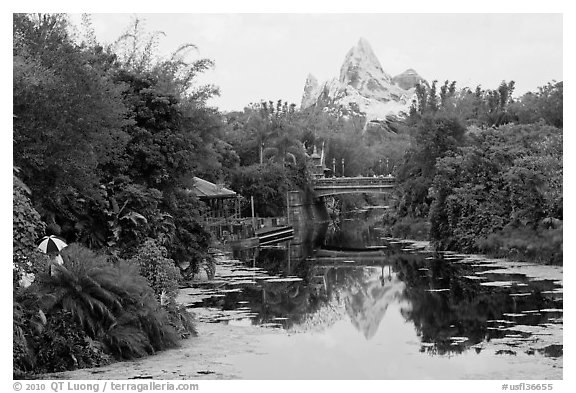 Tropical forest and Everest mountain, Animal Kingdom Theme Park. Orlando, Florida, USA (black and white)