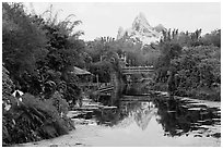 Tropical forest and Everest mountain, Animal Kingdom Theme Park. Orlando, Florida, USA ( black and white)