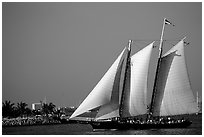 Historic sailboat. Key West, Florida, USA ( black and white)