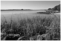 Matanzas River, and fort in the distance, Fort Matanzas National Monument. St Augustine, Florida, USA (black and white)