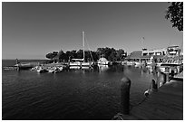 Tiny marina on Vaca Key. The Keys, Florida, USA (black and white)