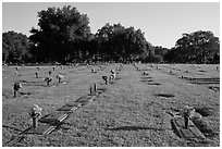 Cemetery. Orlando, Florida, USA ( black and white)