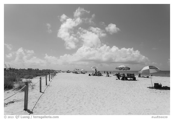 Bowman Beach, Sanibel Island. Florida, USA (black and white)