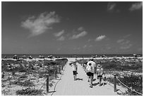 Family walking out to Bowman Beach, Sanibel Island. Florida, USA (black and white)