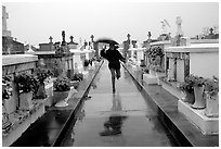 Rain in Saint Louis cemetery. New Orleans, Louisiana, USA (black and white)