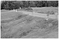 Blue (union) lines markers during civil war pivotal battle, Vicksburg National Military Park. Vicksburg, Mississippi, USA ( black and white)