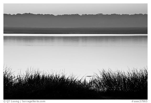 Beaufort Bay at sunrise. Beaufort, South Carolina, USA (black and white)