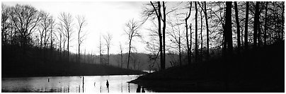 Winter landscape with bare trees and pond at sunrise. Tennessee, USA (Panoramic black and white)