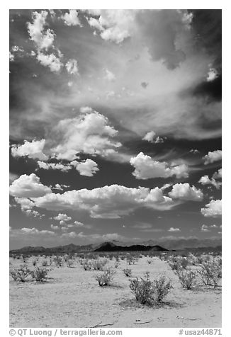 Sandy flat and clouds, Sonoran Desert National Monument. Arizona, USA