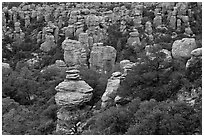 Rhyolite pinnacles. Chiricahua National Monument, Arizona, USA ( black and white)