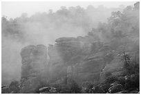 Fog and spires. Chiricahua National Monument, Arizona, USA ( black and white)