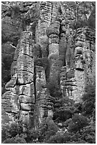 Cliff eroded into stone pillars. Chiricahua National Monument, Arizona, USA ( black and white)