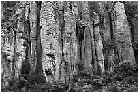 Organ pipe volcanic rock formations. Chiricahua National Monument, Arizona, USA ( black and white)