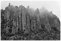 Stone columns. Chiricahua National Monument, Arizona, USA ( black and white)