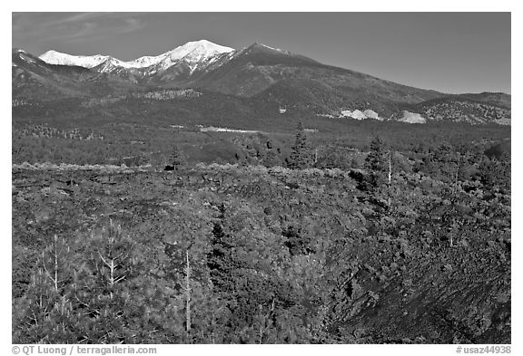 Lava fields and snow-capped San Francisco Peaks, Sunset Crater Volcano National Monument. Arizona, USA (black and white)