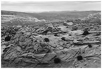 Sandstone landscape of Coyote Buttes South. Vermilion Cliffs National Monument, Arizona, USA ( black and white)