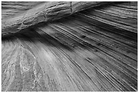 Striation details, Third Wave, Coyote Buttes South. Vermilion Cliffs National Monument, Arizona, USA ( black and white)