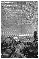 Ecosystem enclosed. Biosphere 2, Arizona, USA (black and white)