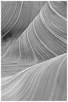 Ondulating rock formation, the Wave. Coyote Buttes, Vermilion cliffs National Monument, Arizona, USA (black and white)